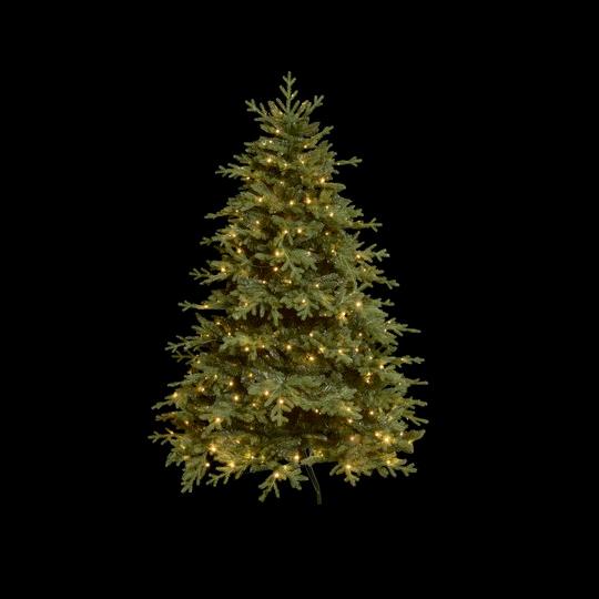 weihnachtsbaum mit Licht